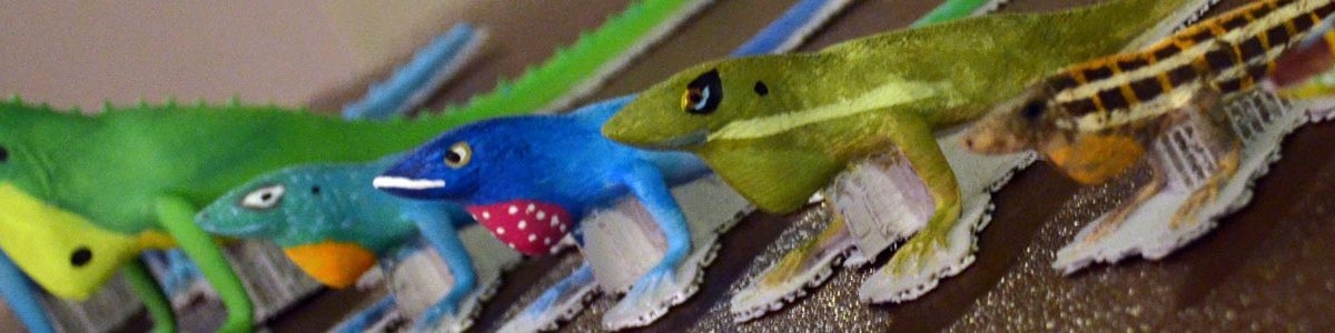 A row of colorful anoles, or small lizards.
