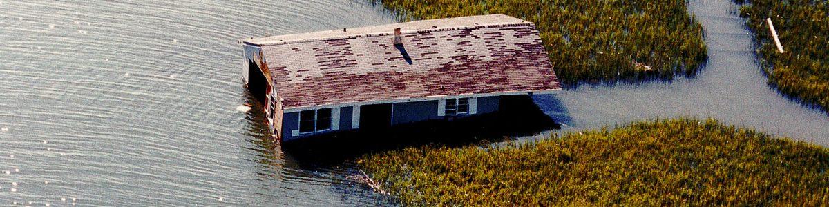 Flooded house in marshland