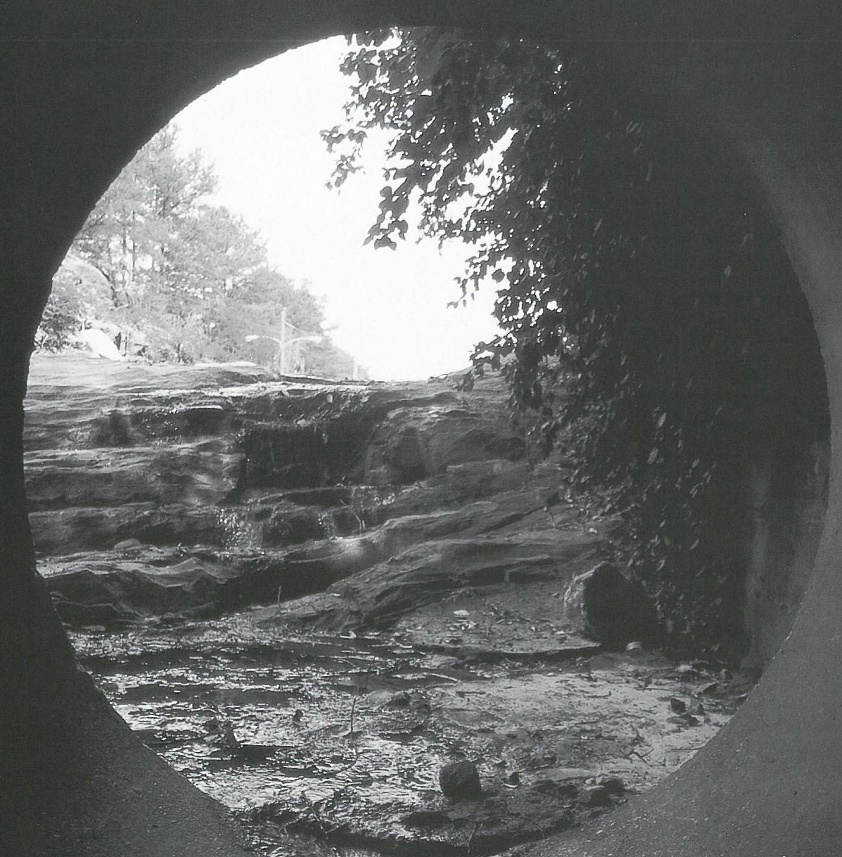 Rocky Branch waterfall