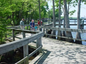 Visitors enjoy a stroll on a wooden walkway.