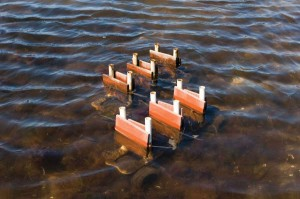 The pair of tile racks catches passing oyster spat and other organisms.