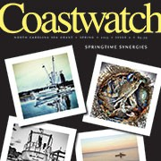 Photo collage of coastal scenes on cover of Spring 2015 Coastwatch
