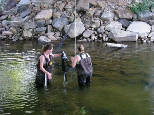 Researchers set up a net in a river.