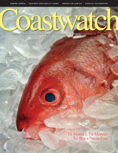 Cover of Holiday 2014 Coastwatch with red snapper on ice