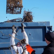 Man throwing discarded crab pot into dumpster.