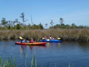 Currituck Sound kayakers