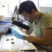 Ian Kroll in lab