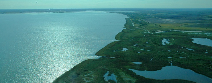northern Gulf of Mexico