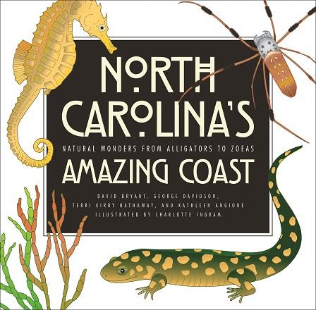NC's Amazing Coast