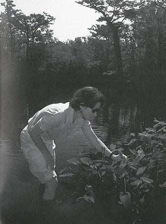 Camilla Herlevich
