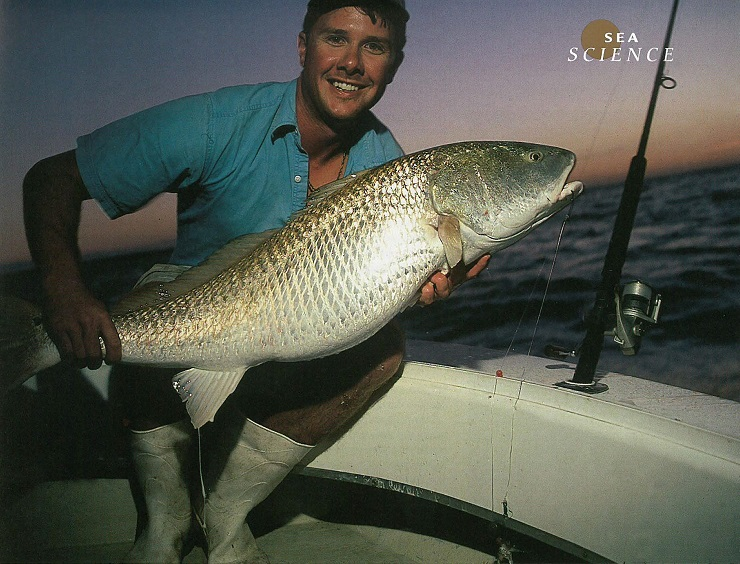 Captain George Beckwith with red drum