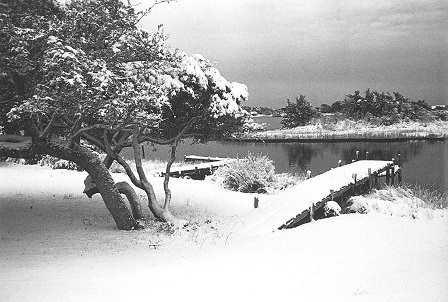 winter storm on Hatteras Island