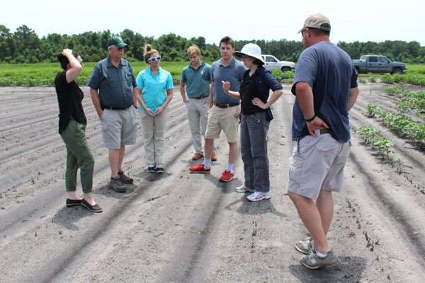Whitehead working with Hyde County farmers