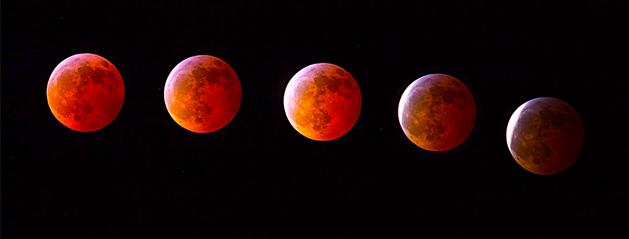 This composite of exposures documented 24 memorable minutes from Brook Valley in Pitt County, during last year's full lunar eclipse. Photo by P. Gemperline.