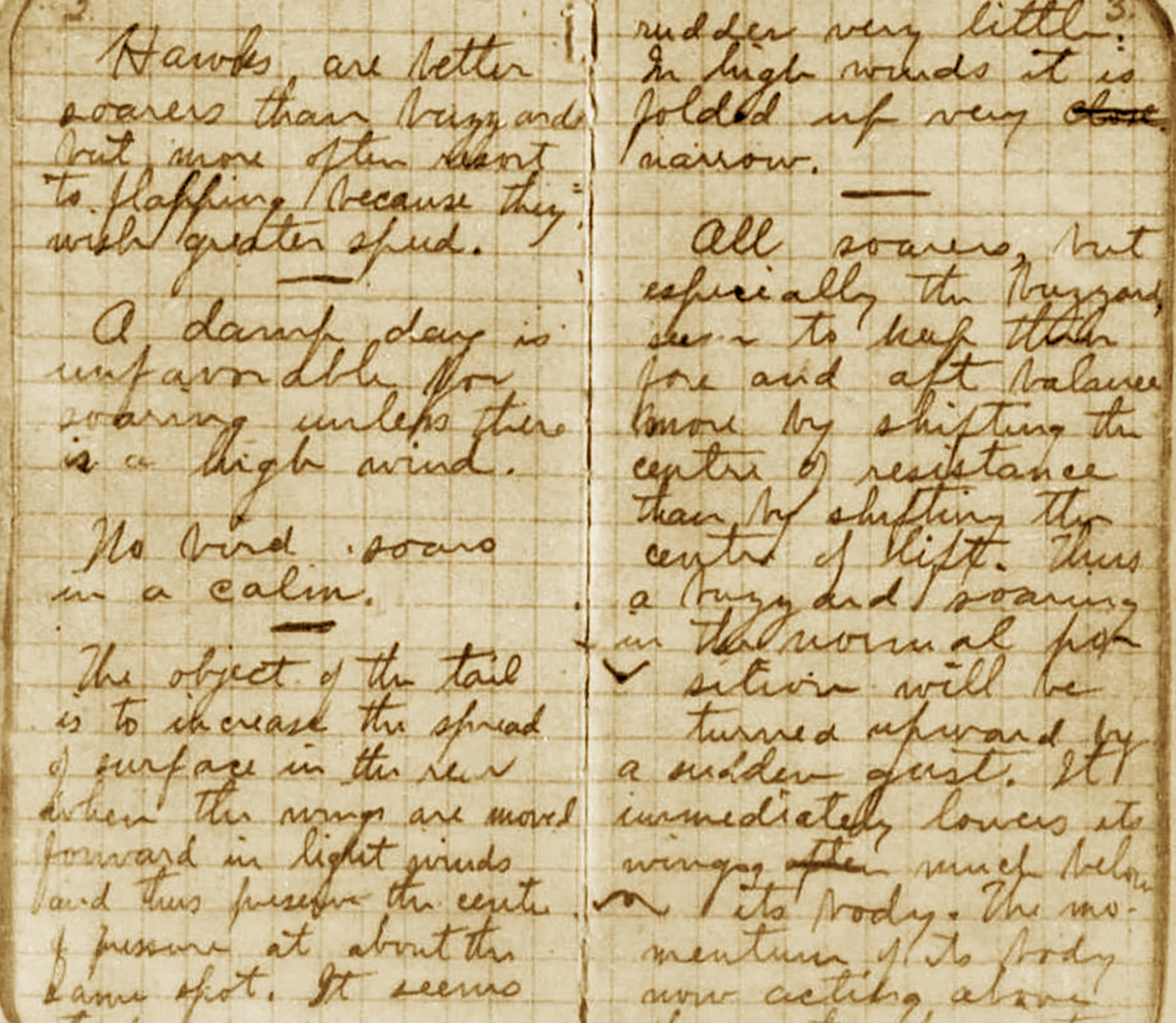 In Wilbur Wright's diary from Kitty Hawk in 1900, he recorded his reflections on birds taking flight from the sounds. Photo courtesy of the Library of Congress.