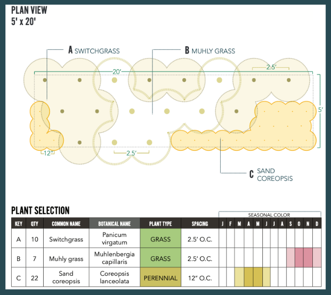 Image of filter strip landscaping design plan view and plant selection