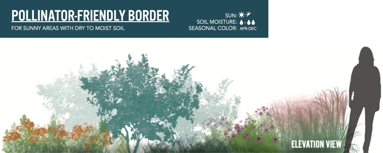 Image of the pollinator-friendly border design