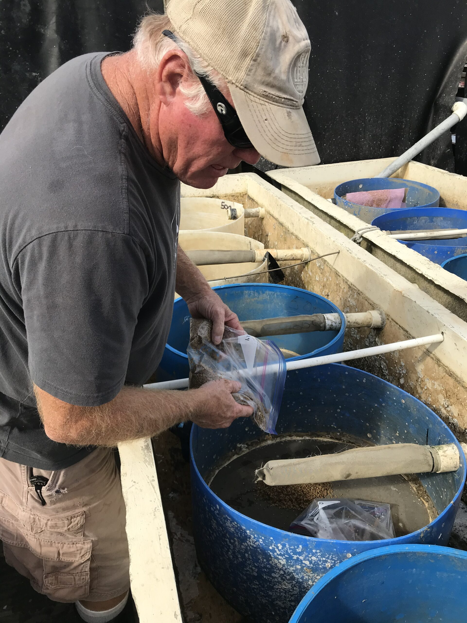 The Morris operation includes a hatchery and nursery for oysters and clams. Credit: Eric Herbst
