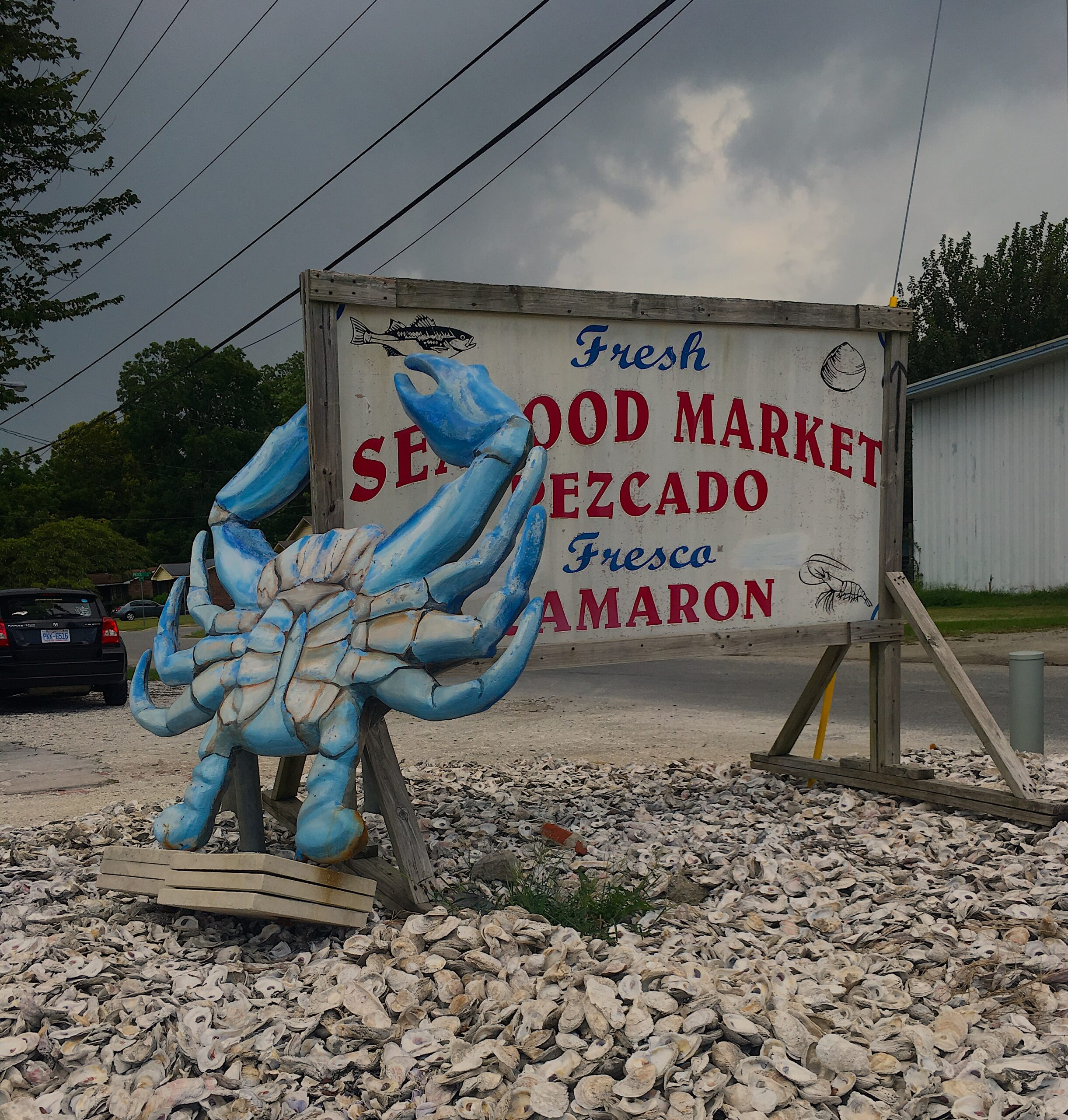 Despite heightened concern over the loss of market share to seafood from other countries, wholesalers differed on the general health of their businesses. Photos by Barbara Garrity-Blake.