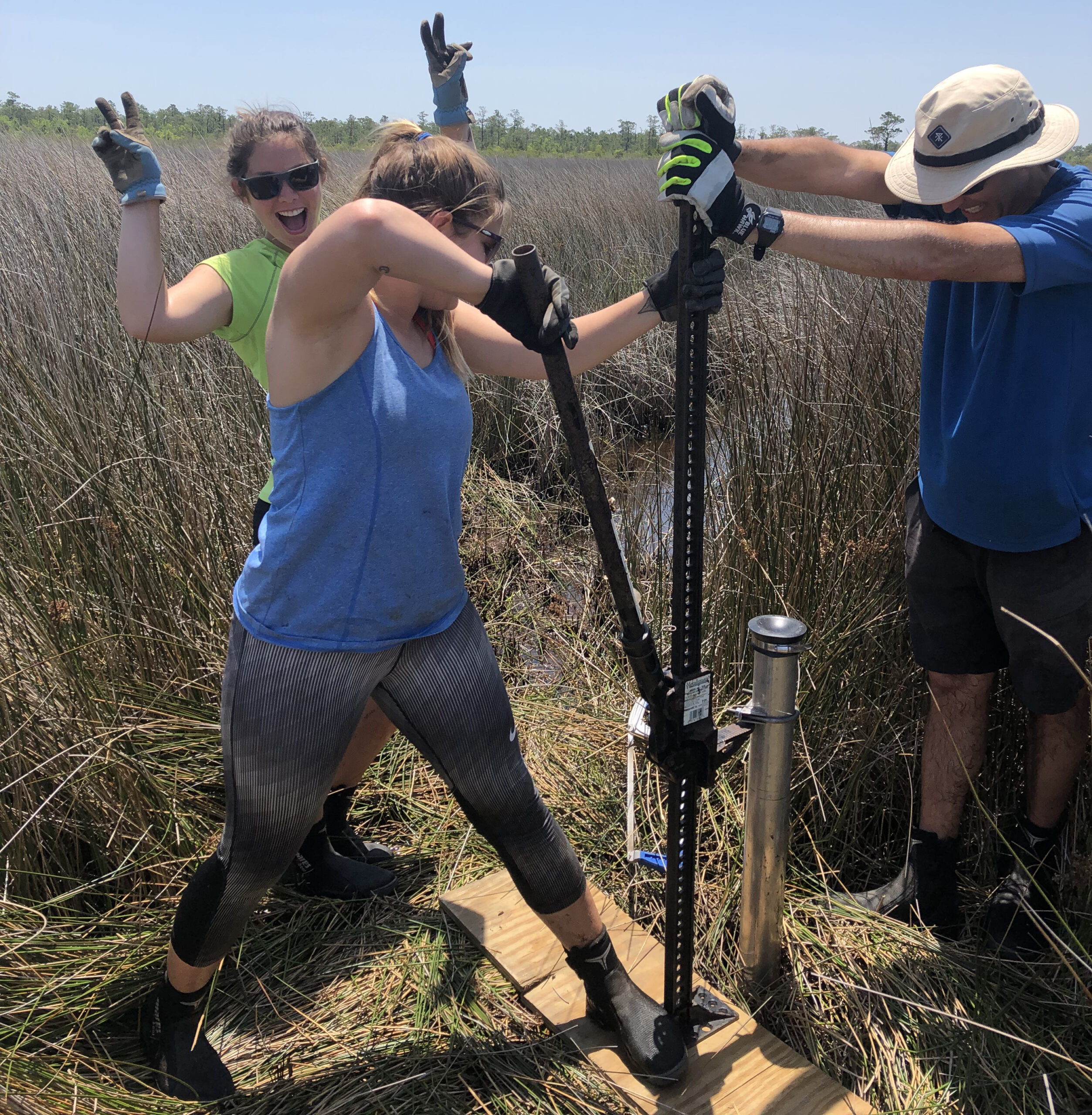 Carson Miller and Antonio Rodriguez pull a core out of the salt marsh with a ratchet jack. In the background, Molly Bost offers encouragement. Photo: Emily Eidam
