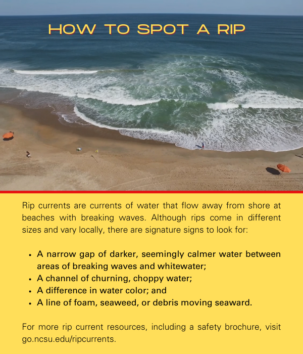 Information on how to spot a rip: Rip currents are currents of water that flow away from shore at beaches with breaking waves. Although rips come in different sizes and vary locally, there are signature signs to look for: 1) A narrow gap of darker, seemingly calmer water between areas of breaking waves and whitewater; 2) A channel of churning, choppy water; 3) A difference in water color; and 4) A line of foam, seaweed, or debris moving seaward. For more rip current resources, including a safety brochure, visit go.ncsu.edu/ripcurrents.