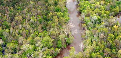 Aerial view of part of the Neuse River