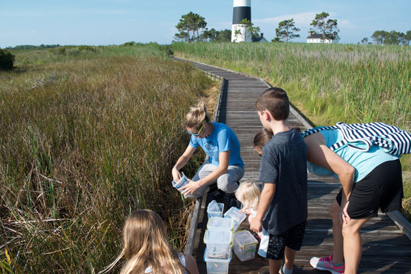 Molly releases frogs, watched by children, with lightouse in the background