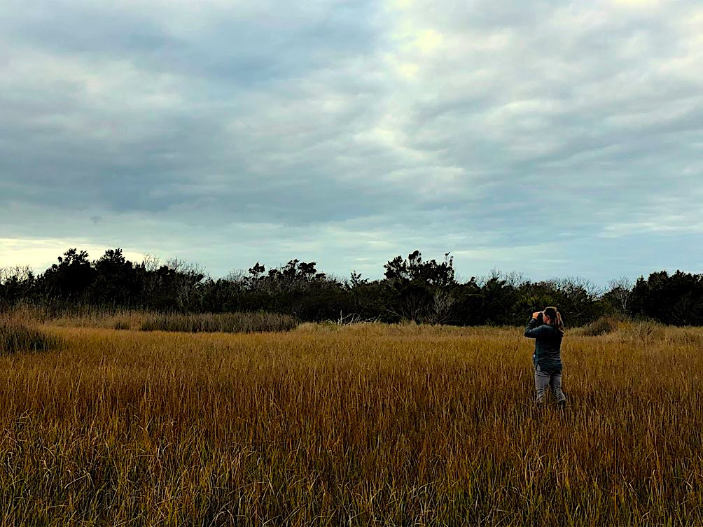 image of Marae Lindquist in the marsh