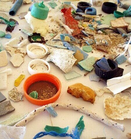 Plastics that find their way into the ocean experience leaching, a dissolving of the material's components, including chemicals that are harmful to the environment. Image courtesy of the NOAA Marine Debris Program.
