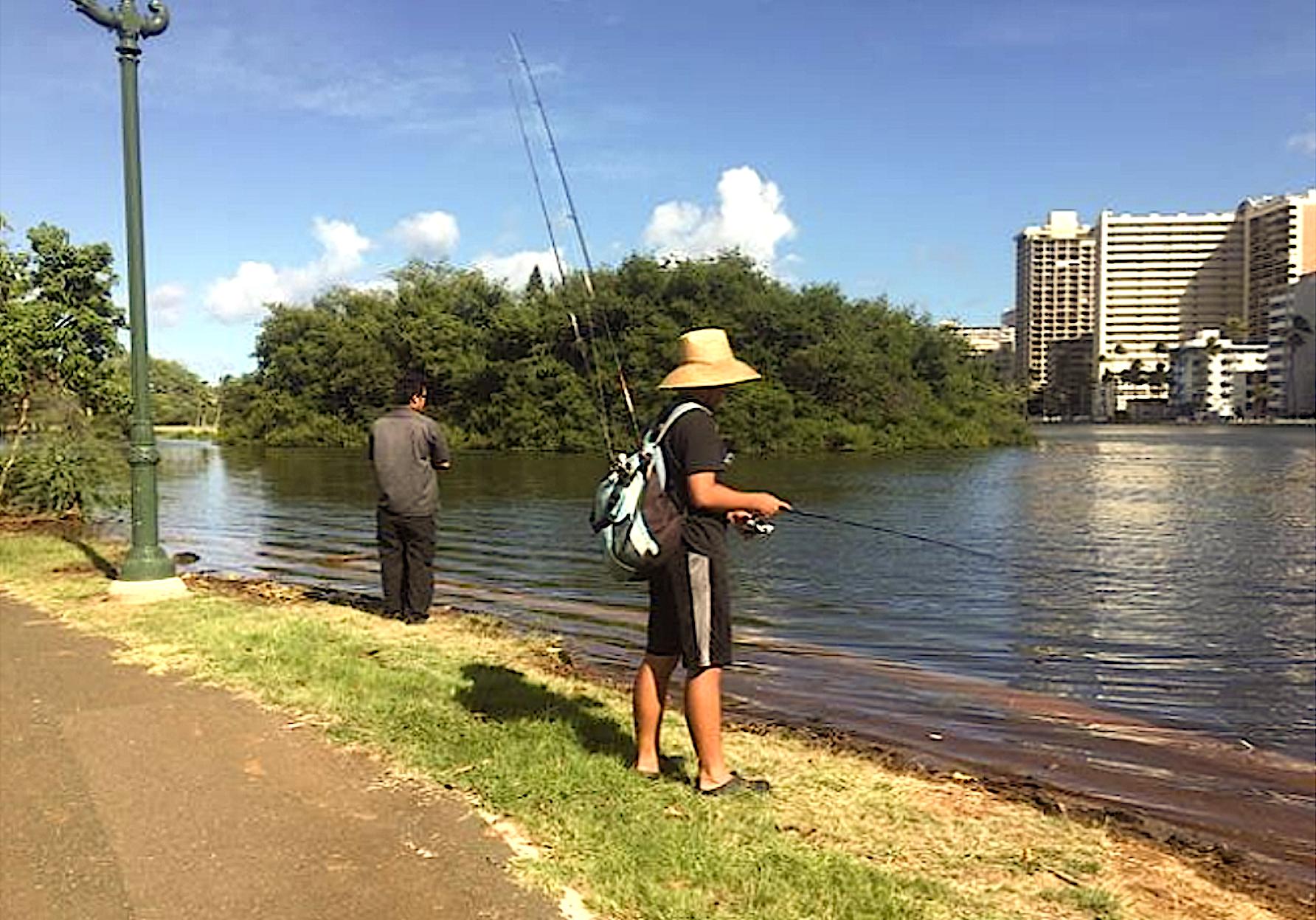 King tides overtop the walls of the Ala Wai Canal in Mōʻiliʻili, Hawaiʻi (credit: Hawaiʻi and Pacific Islands King Tides Project)
