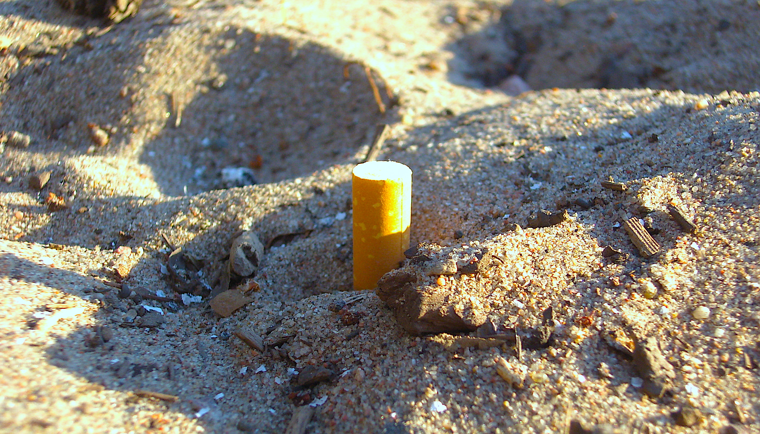 image: cigarette butt, photo by Helen Penjam via CC-BY-2.0 (edited)