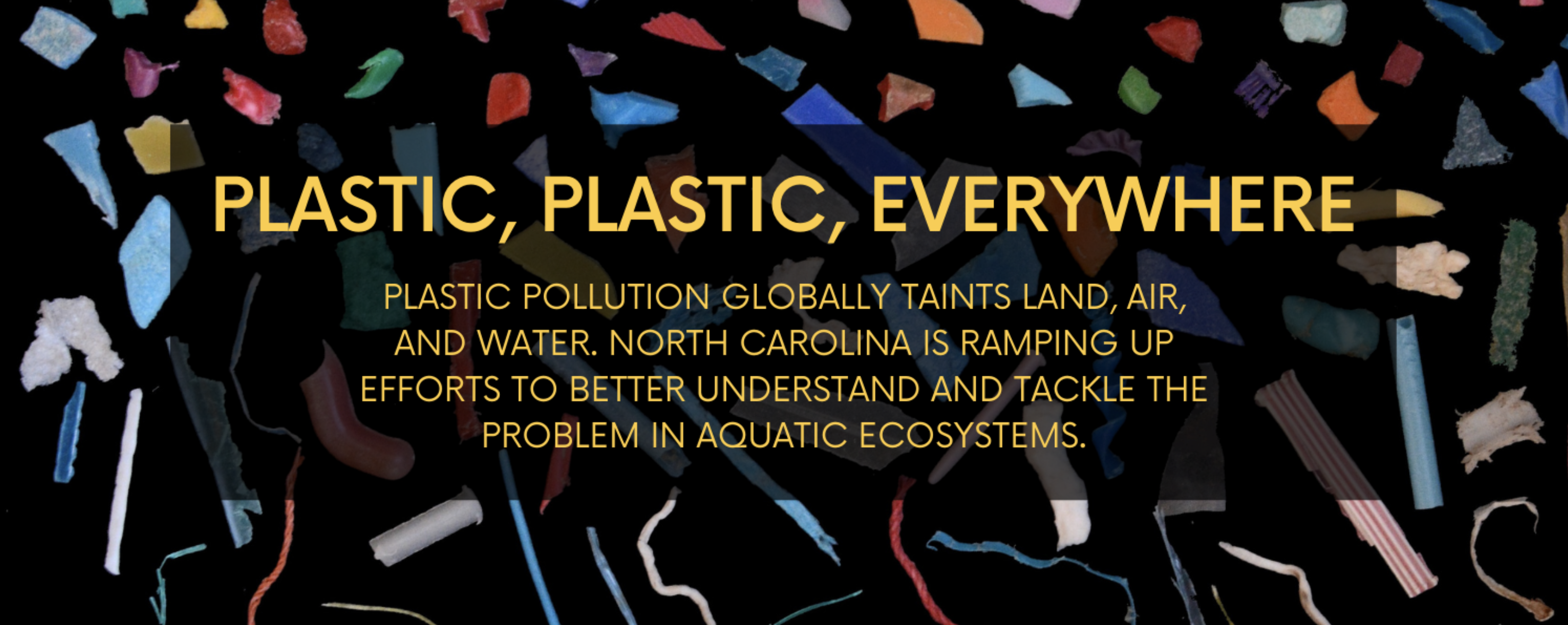 Plastic pollution comes in a continuum of sizes and shapes. Image by Merel Kooi/ Wageningen University & Research.