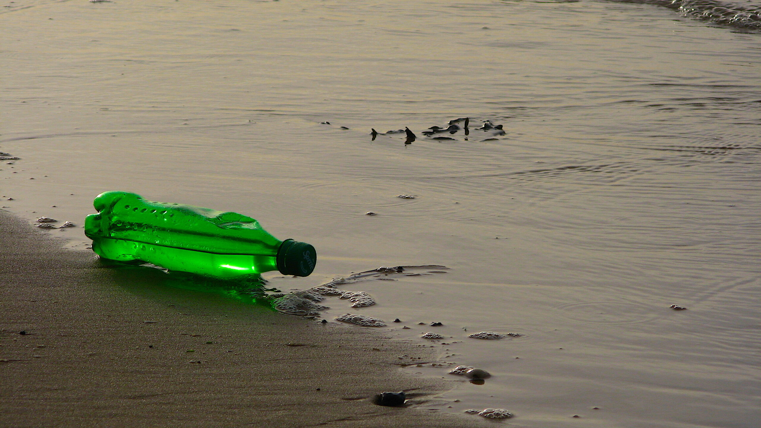 image: plastic bottle. Photograph by Falken, CC-BY-SA 2.5 (edited).