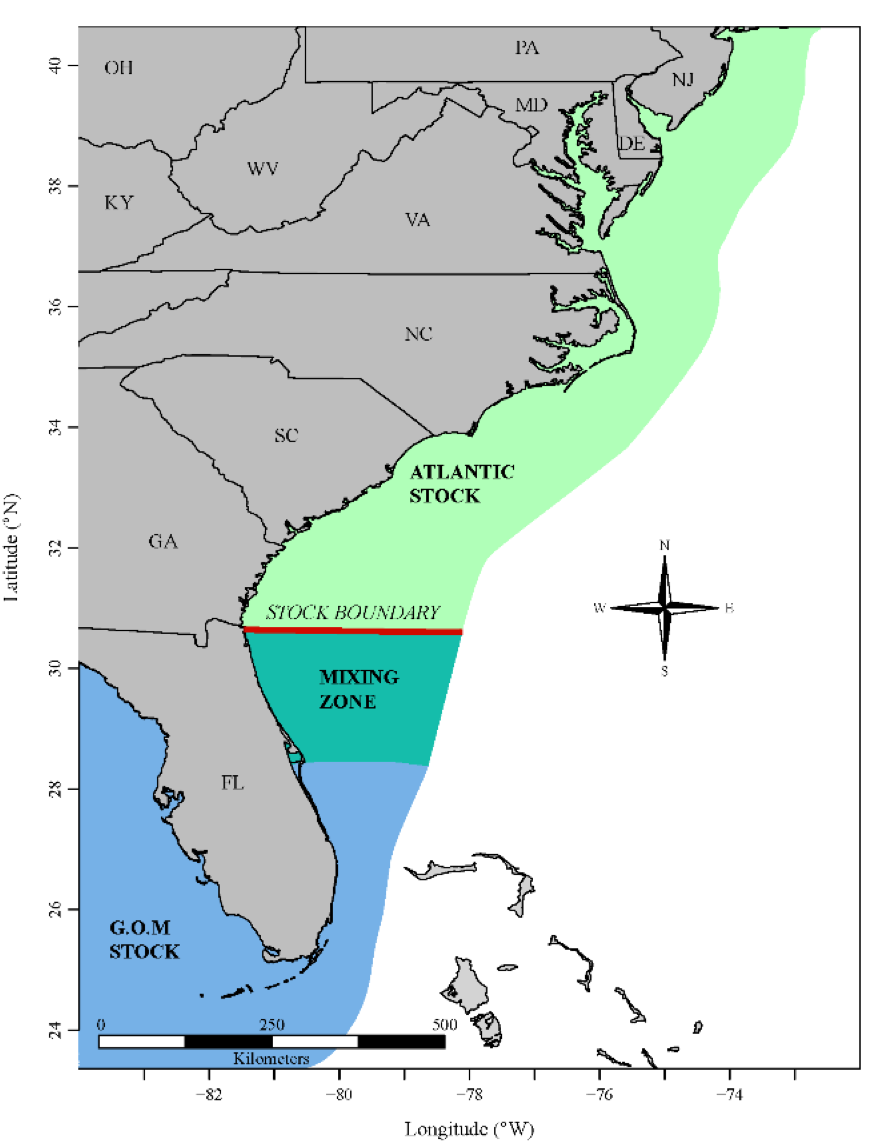 Atlantic (light green) and Gulf of Mexico (blue) stocks of cobia mix between Cape Canaveral, Florida, and the Georgia-Florida state line (SEDAR58).