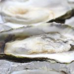 Oyster on the half shell. Photo by Vanda Lewis