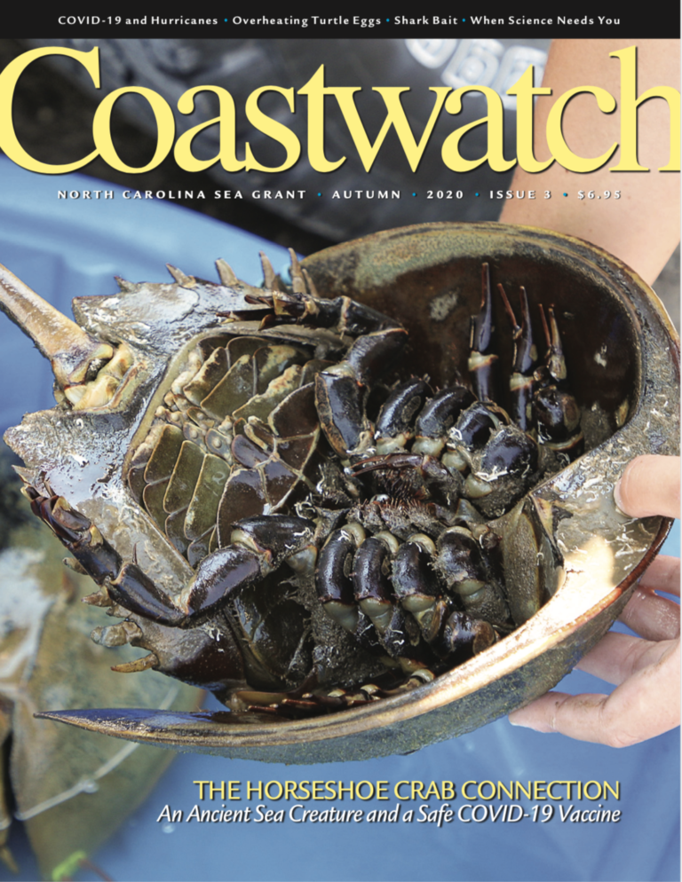 Coastwatch magazine front cover of a horseshoe crab, turned upside down