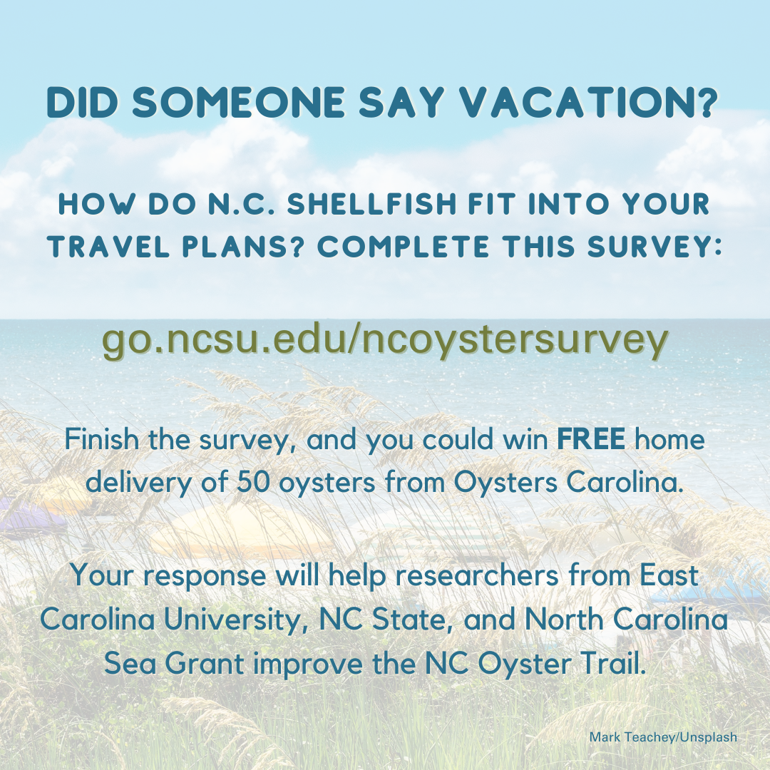 An Instagram-size image inviting people to take the oyster tourism survey.