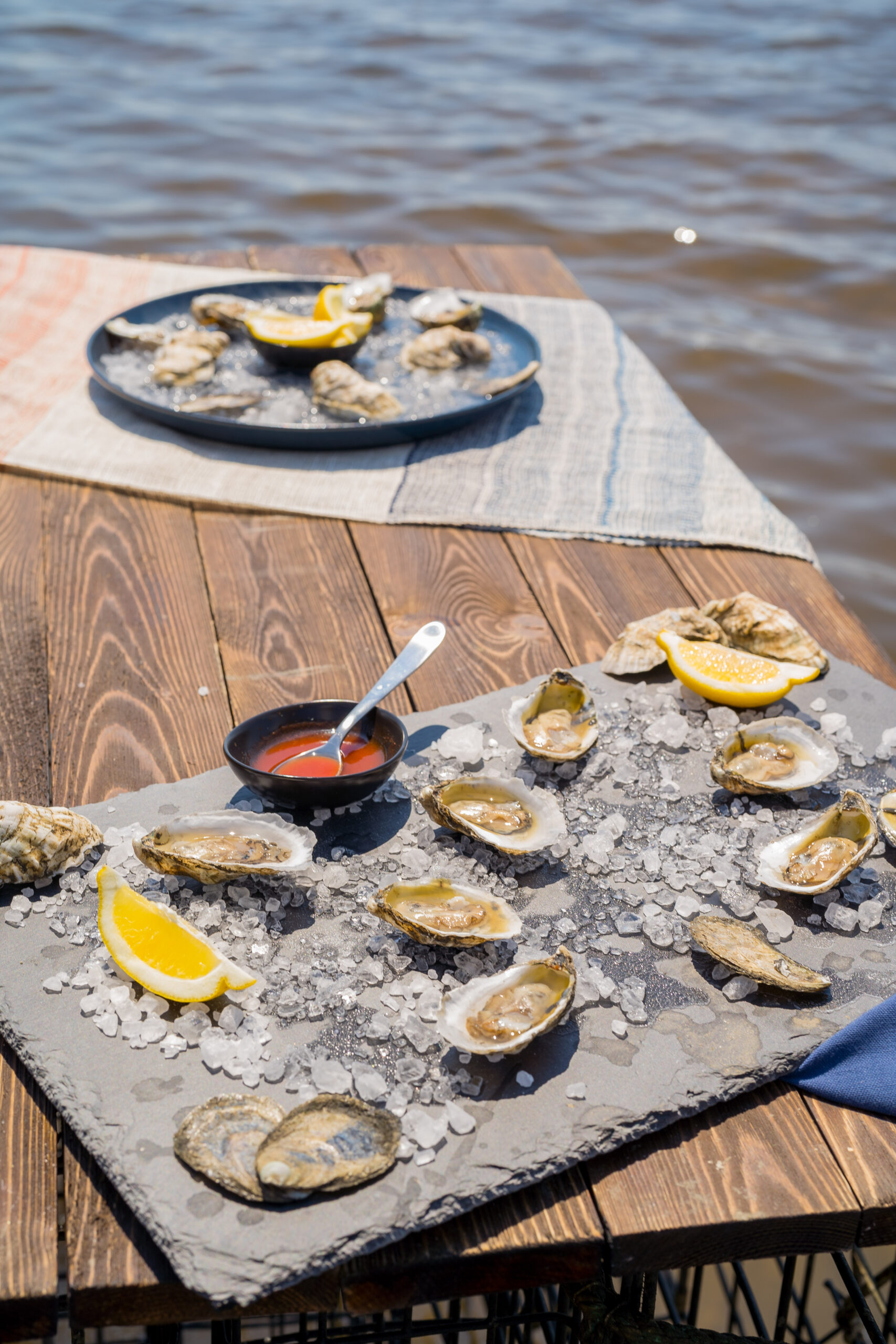 N.C. oysters on the half shell. Photo by Justin Kase Conder.