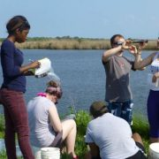 Students conducting field work near water
