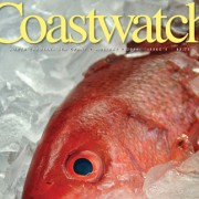 Cover of Holiday 2014 issue of Coastwatch with a red snapper on ice