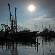 Shrimp boats docked in Raccoon Creek in Oriental. Photo Roger Winstead