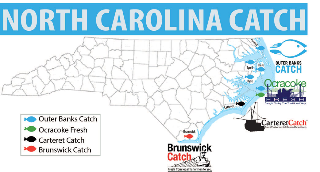 Map of catch groups in NC