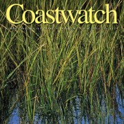 Coastwatch Spring 2014 cover of marsh grass, Shallotte River.