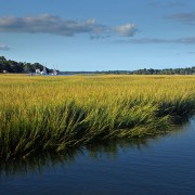 Boats and sea grass in Brunswick County.