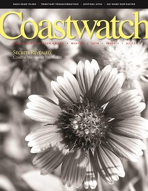 Coastwatch Winter 2016