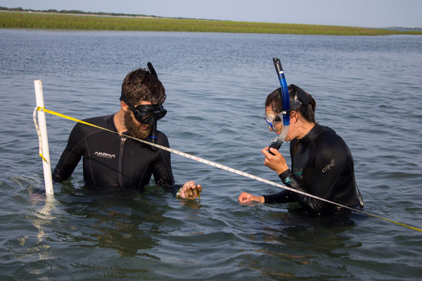 People in wetsuits in chest-high water