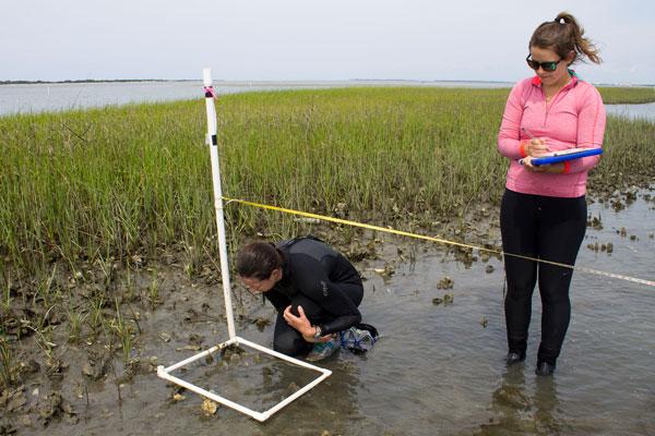 Two women in marsh