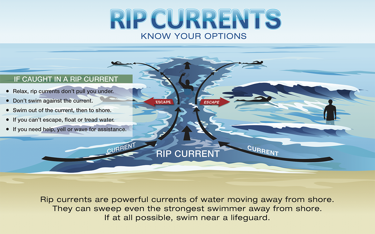 nts are powerful currents of water moving away from shore. They can sweep even the strongest swimmer away from shore. If at all possible, swim near a lifeguard.