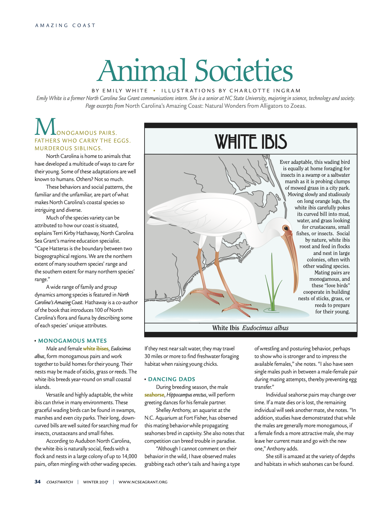 "An image of the first page of the article ""Animal Societies"""