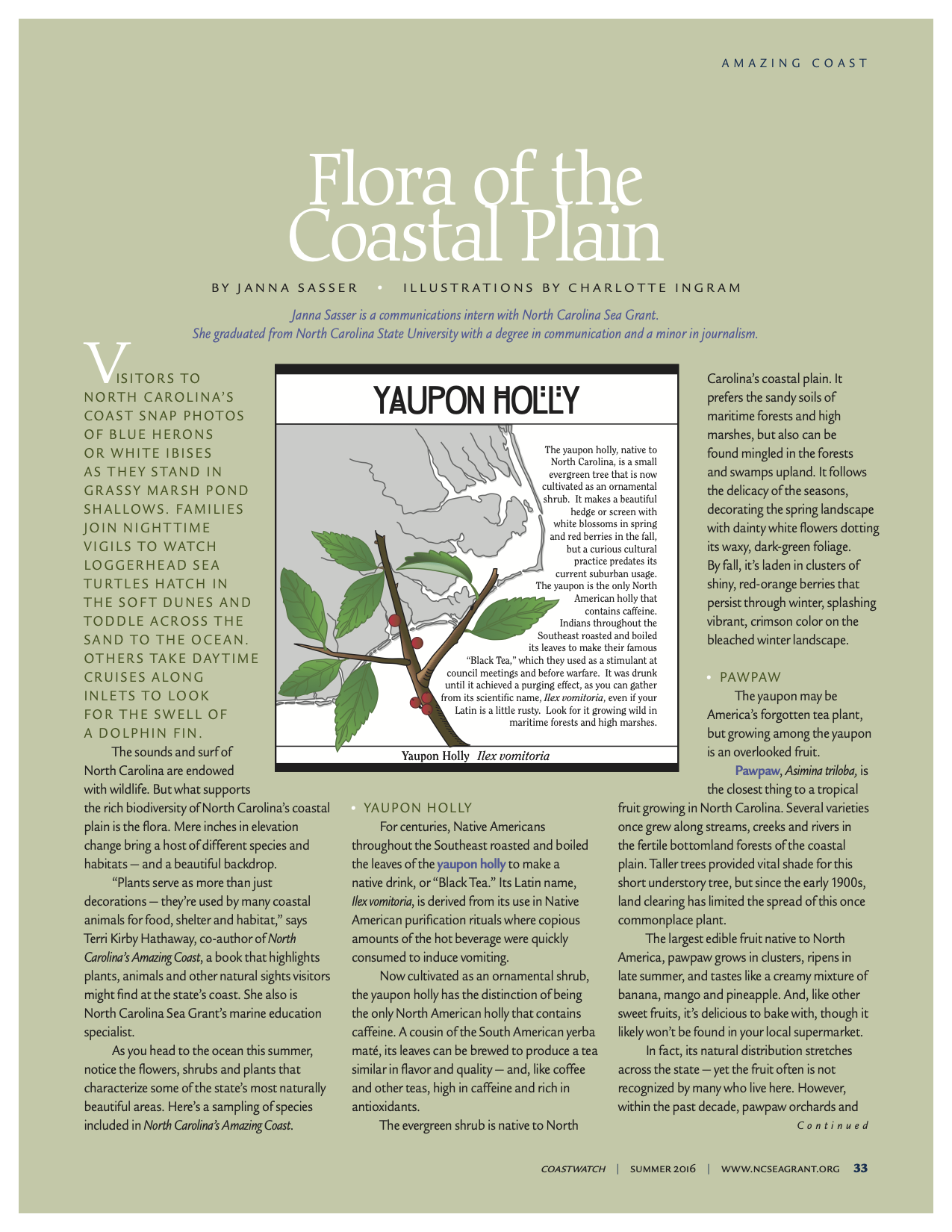 "An image of the first page of the article, ""Flora of the Coastal Plain"""